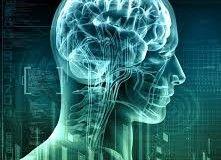 «Отключение» хронических заболеваний может стать медициной будущего