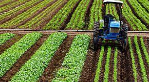 Производитель удобрений CF Industries покупает активы OCI за 6 млрд. USD