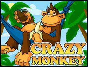 Видеослот Crazy Monkey